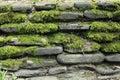 Moss on stone wall Royalty Free Stock Photo
