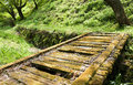 Moss wooden bridge covered in lush rainforest area in japan Royalty Free Stock Images