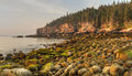 Mossy boulders on acadia coast rounded stones boulder beach looking toward the otter cliffs at sunrise in national park maine Stock Photo