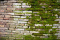 Mossy brick wall Royalty Free Stock Image