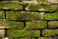 Mossy brick wall Stock Photo
