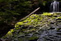 Mossy Cascade Royalty Free Stock Photos