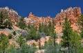 Mossy creek trail hoodoos, bryce canyon national park, utah, usa Royalty Free Stock Photo