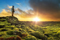 Mossy lava beautiful tourist posing in the amazing volcanic landscape of eldhraun at sunrise in iceland Stock Photos