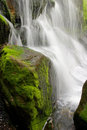 Mossy waterfall Royalty Free Stock Images
