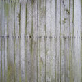 Mossy wooden background weathered planks texture Stock Photos