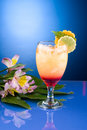 Most popular cocktails series - Mai Tai Stock Image