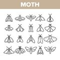 Moth, Insects Entomologist Collection Vector Linear Icons Set Royalty Free Stock Photo