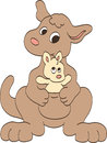 Mother and Baby Kangaroos Stock Images