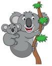 Mother and baby koala cartoon Royalty Free Stock Photo