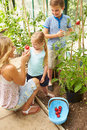 Mother and children harvesting tomatoes in greenhouse looking at each other smiling Royalty Free Stock Photos