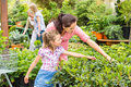 Mother daughter choosing flowers in garden shop Stock Photography