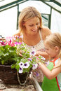 Mother and daughter growing plants in greenhouse close up of smiling Royalty Free Stock Photos