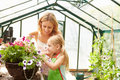 Mother and daughter growing plants in greenhouse together outdoors Royalty Free Stock Images