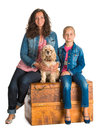 Mother and daughter sitting in a wooden chest with american span spaniel on white background Royalty Free Stock Images