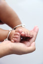 Mother holds baby feet in hands. Royalty Free Stock Photo