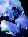 Mother Natures ice sculpture Royalty Free Stock Photo