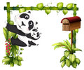 A mother panda together with her baby illustration of on white background Royalty Free Stock Photos