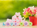 Mother`s day concept.