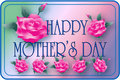 Mother's Day Roses Stock Photography