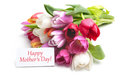 Mother s dqay bouquet of fresh tulips and tag solated on white background Stock Photo