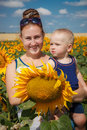 Mother and son having fun in the field of sunflowers outdoor Royalty Free Stock Photography