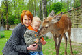 Mother and son pet a deer Stock Photos