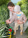 Mother teaching botany her kid Stock Photo
