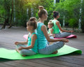 Mothers and daughters doing exercise practicing yoga outdoors Royalty Free Stock Photo