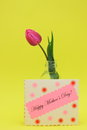 Mothers day card stock photos with happy mother s text and pink tulip flower Stock Photography