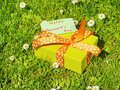 Mothers day gift box picture of yellow Stock Photography