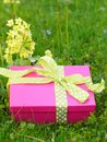 Mothers day gift box picture of yellow Royalty Free Stock Image