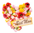 Mothers day heart shaped greeting with an arrangement of beautiful mulitcoloured fresh tulips isolated on white with a gift tag Royalty Free Stock Images