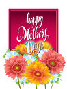 Mothers Day Lettering, poster, advertising of spring flowers Gerber Royalty Free Stock Photo