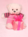 Mothers day picture of a teddy bear stock photo beautiful teddybear with gift box on pink background Stock Photography