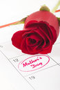 Mothers day red rose bud on calendar showing Royalty Free Stock Images