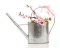 Mothers Day Watering Can Royalty Free Stock Images