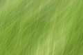 Motion blur abstract green texture Royalty Free Stock Photos