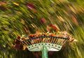 Motion blur on green lawn rake leaves Royalty Free Stock Photo