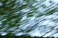 Motion Blurred Foliage Abstrac...