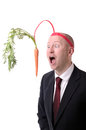 Motivation carrot self of dangling a on a stick isolated on white Stock Images