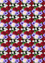 Motley seamless background with roses dahlias asters abstract and petunias on a black Stock Photo