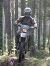 Durch Wald