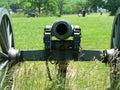Motor Vehicle, Grass, Cannon, Vehicle