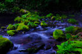Mototaki River, Japan. Royalty Free Stock Photos
