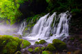 Mototakihukuryuusui Falls, Japan. Royalty Free Stock Photo