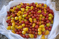 Mound of Cherry Tomatoes on Kitchen Counter Royalty Free Stock Photo