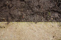 Mound construction.  Soil background. Park ground texture with rocks mulch and dirt. Black soil texture. fine texture of brown gra Royalty Free Stock Photo