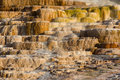 Mound Spring at Mammoth Hot Springs Royalty Free Stock Image