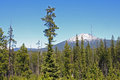 Mount bachelor from the deschutes national forest dominates skyline within in central oregon cascades Stock Photos